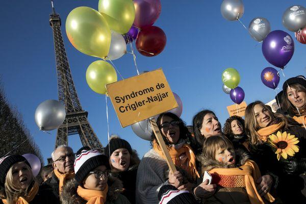 La marche des maladies rares, dans le cadre du Téléthon, à Paris.
