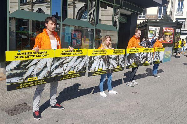 Le 30 mars 2019, des militants de l'association L214 avaient manifesté pour dénoncer la pêche et l'agonie des poissons