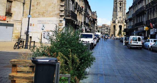 Quartier Saint-Michel à Bordeaux. Les dealers utilisent les poubelles pour cacher la drogue.