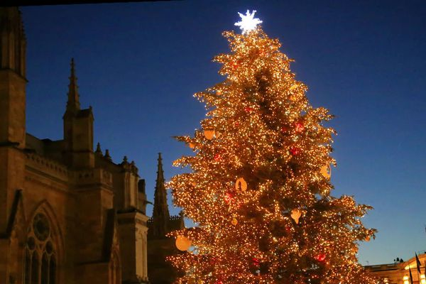 Le traditionnel sapin de Noël de la place Pey-Berland à Bordeaux