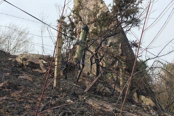 Les vents violents ont également endommagé les lignes électriques, hier le 20/02/21 au Pays basque.