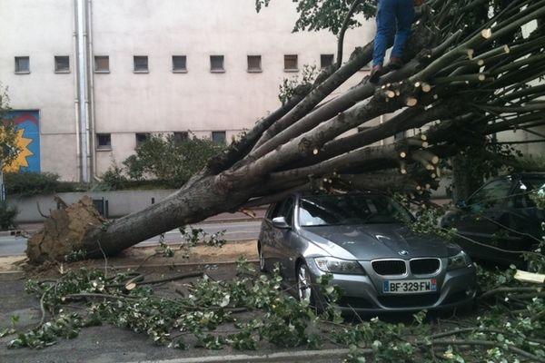 Un arbre s'est écrasé sur une voiture à Empalot à Toulouse