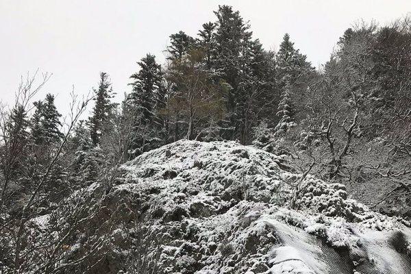 La couche de poudreuse tient au sol à partir de 1.000 mètres sur le massif des Vosges.