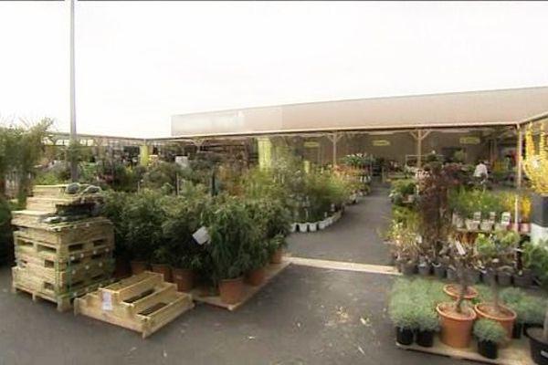L'espace pépinière a été particulièrement soigné dans le nouveau magasin de Buchy (Seine-Maritime).