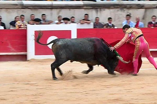 Nîmes - Pépé Moral, après sa blessure à la corrida de dimanche - 16 septembre 2018.