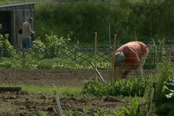 Le paradis des jardiniers