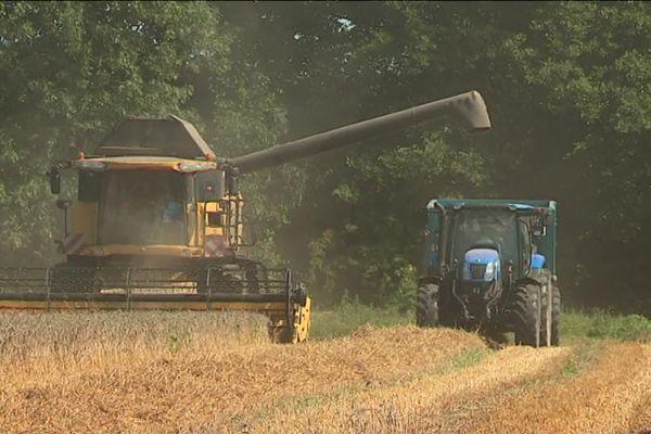 La Bretagne comptait près de 38.000 exploitations en 2007. Il en reste moins de 26.000 aujourd'hui
