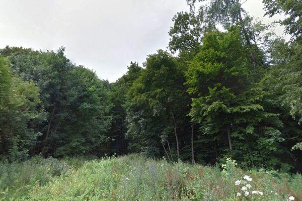 Les ossements auraient été découverts au pied d'une souche, dans le bois de Verdrel à Fresnicourt-le-Dolmen.