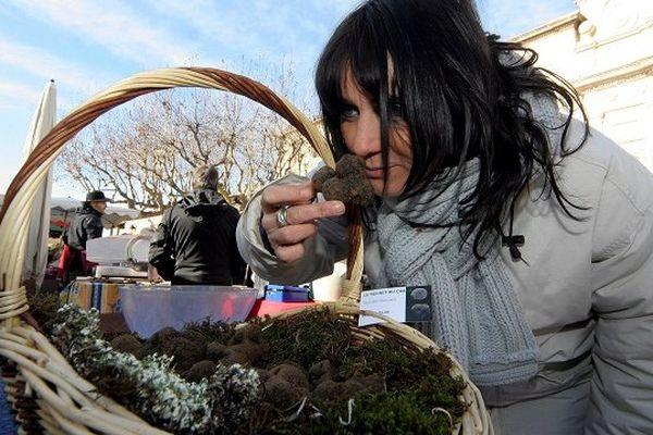 Tout savoir sur la truffe à fête de Lalbenque samedi 25 et dimanche 26 janvier 2014