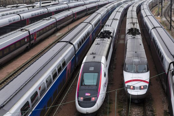 En moyenne, un TGV sur 5 et un TER sur 10 circuleront ce week end dans la région Auvergne-Rhône-Alpes.