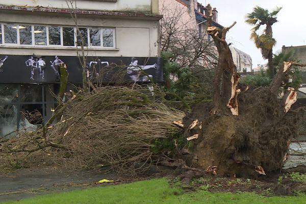 La tempête Myriam a frappé les Pyrénées Atlantiques (ici à Pau) avant de toucher les Hautes-Pyrénées