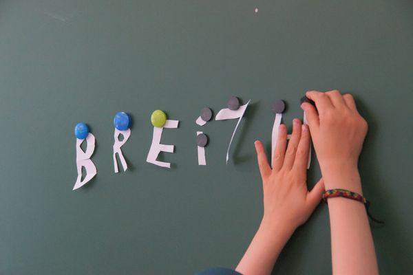 Les candidats aux Régionales en Bretagne condamnent les propos de Jean-Michel Blanquer visant Diwan.