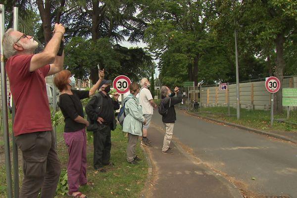 Une quinzaine de membres d'associations environnementales ont assisté, dépités, à l'abattage d'un arbre multicentenaire.