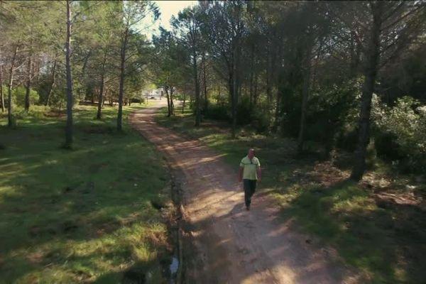 """Les sites de la technopoles sont installés dans un grand parc naturel, nommé la """"Couronne verte"""" de Sophia."""