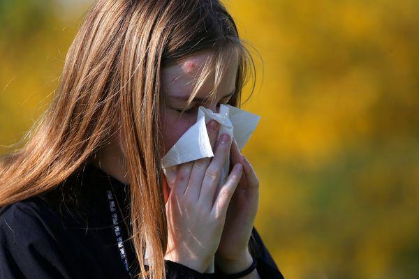 Près de 25% de la population française souffre d'allergie respiratoire.