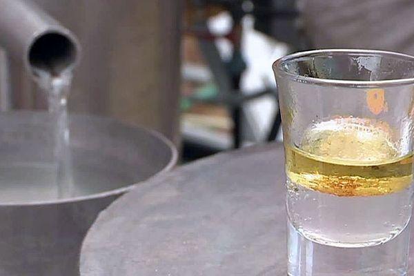 Gard : La distillerie mobile pour plantes aromatiques élabore des huiles essentielles et des extraits de plantes - 2018.