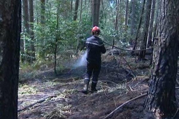 Les pompiers sont très sollicités, la chaleur occasionne de nombreux incendies.