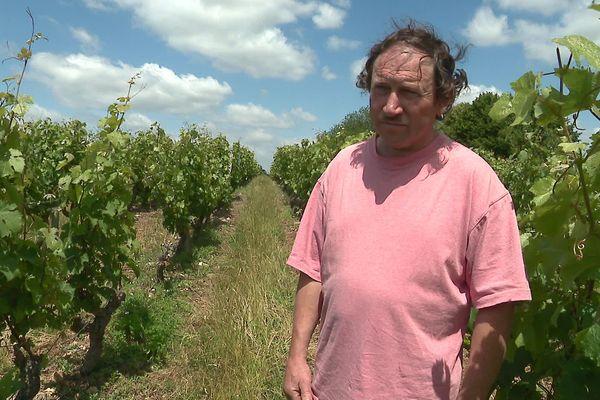 Pascal Janvier, vigneron à Marçon en appellation Jasnières et Coteaux du Loir