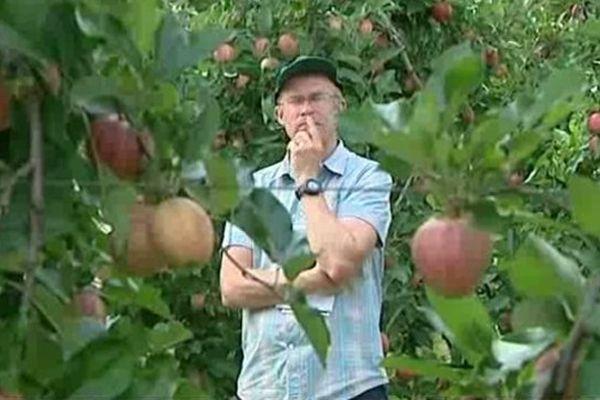 Réflexion croisées sur les pommes : leurs productions, leurs traitements, leurs goûts...