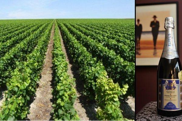 Le vin produit par le vignoble des Agaises est commercialisé sous le nom de Ruffus.