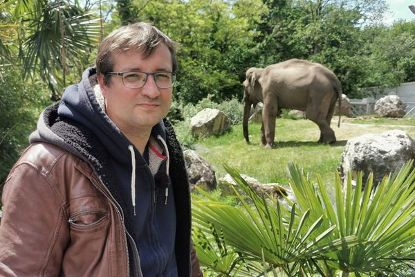 """Le projet """"Breizh Park"""" porté par Sébastien Musset a eu la préférence du tribunal de commerce de Lorient face à celui de Sea Shepherd pour l'attribution du zoo de Pont-Scorff."""
