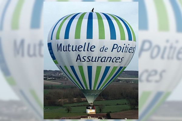 Rémi Ouvrard remporte le record du monde en tenant debout, au sommet de la montgolfière de son père, à plus de 1000 m du sol (21/02/2020).