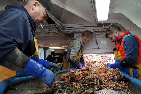 Pêcheurs au travail à bord du Good Fellowship, le 21 janvier 2020.