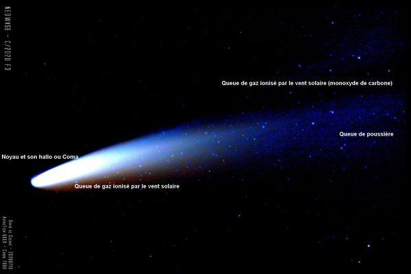 De quoi se compose la comète Neowise qui avance dans l'espace à la vitesse de 44 km par seconde