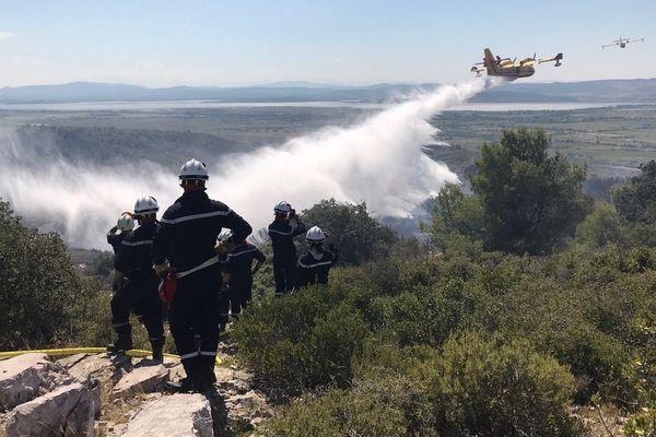 Un incendie a ravagé plus de cinq hectares de pinède dans le massif de La Clape, dans l'Aude -20 août 2018