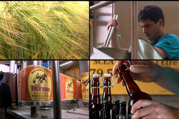 Chaque année, 10 hectares d'orge cultivés par la ferme de l'être Soyer sont dévolus à la fabrication d'une bière artisanale