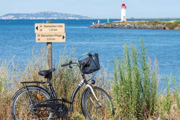 Depuis 2008, la municipalité de Marseillan a aménagé 15 km de pistes cyclables et 30 kilomètres de voies douces.