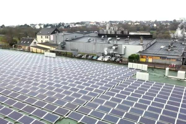 L'usine de biscottes de Granville a déployé 1000 panneaux photovoltaïques sur son site.