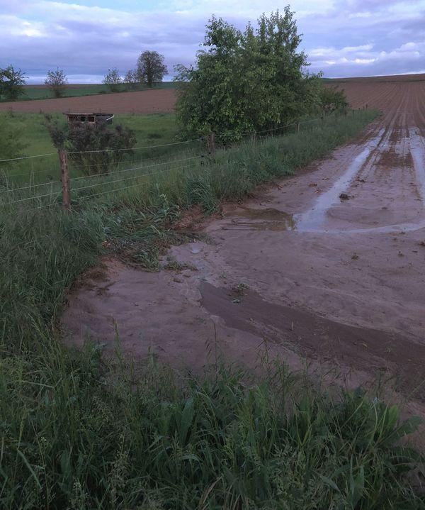 Quelques champs ont fait les frais de coulées de boue le week-end du 15 mai. Ici à Alteckendorf (Bas-Rhin)