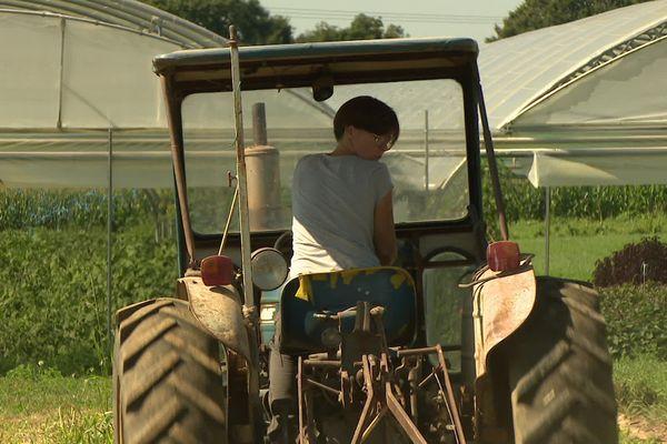 Virginie Roussel exploite dix hectares de légumes bio à Guipry-Messac en Ille-et-Vilaine