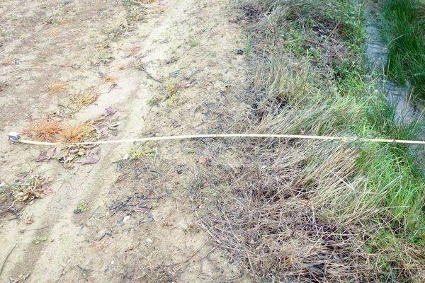 Un champ traité aux pesticides à moins de 5 mètres d'un ruisseau, au nord de Béziers dans l'Hérault. Une pratique illégale dénoncée par les associations de protection de l'environnement.