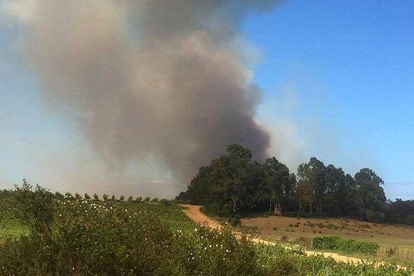 07/05/2017 - Haute-Corse: près de 6 hectares détruits dans un incendie sur la commune d'Aleria