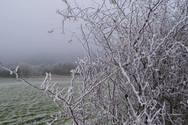Jolie photo de neige prise par Philippe