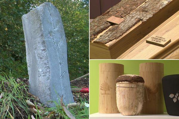 De nouveaux rites funéraires visent à limiter l'impact écologique après la mort.