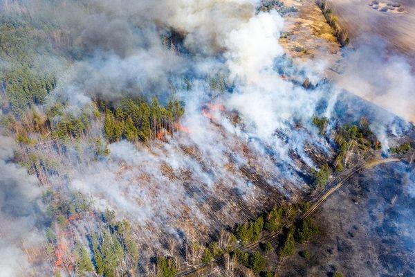 Une vue aérienne de l'incendie dans une forêt située dans la zone d'exclusion de Tchernobyl le 12 avril 2020