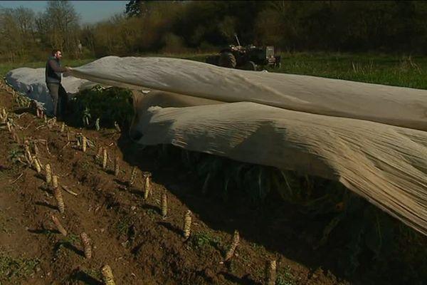 Benjamin Cochin dépose sur plusieurs centaines de pieds un grand voile de nylon.