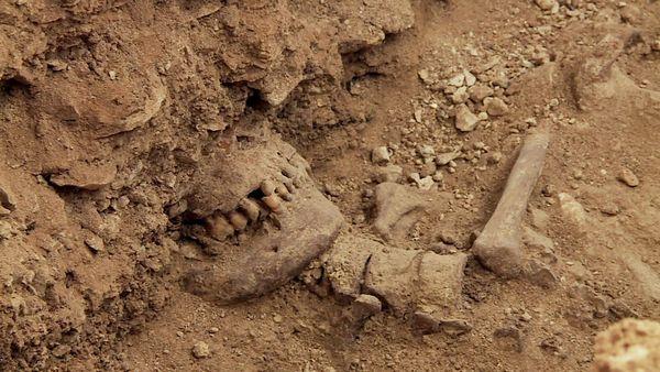 Quel est ce mystérieux personnage découvert enterré sous l'autel de la chapelle seigneuriale du château des Milandes, un lieux inhabituel pour une sépulture