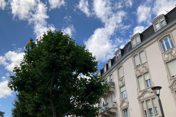 De nombreux habitants de la cité du Port du Rhin subissent les nuisances, bruit et fientes, des centaines d'étourneaux qui ont élu domicile sous leurs fenêtres.