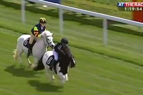 Une course de galop pour poneys shetland ici à Bath, sud ouest de la Grande Bretagne