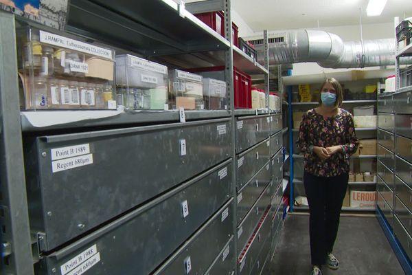 L'une des plus grande collections planctonique du monde se trouve à Villefranche-sur-Mer.