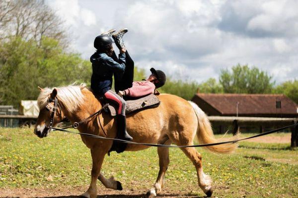 La ferme pédagogique propose aussi des activités de voltige équestre et cirque