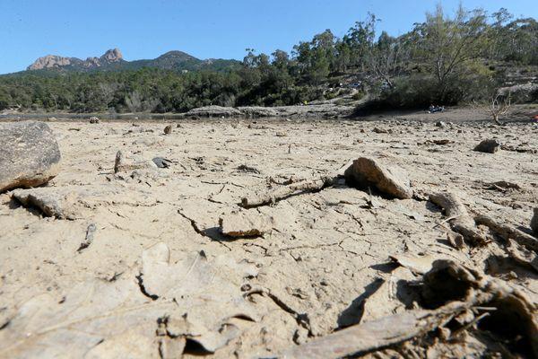 Comme dans le Var cette année, la Marne pourrait subir une vague de sécheresse.