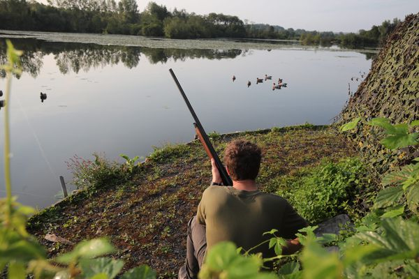 Les chasseurs veulent changer l'image de leur loisir. Photo d'illustration / © DOMINIQUE TOUCHART / MAXPPP