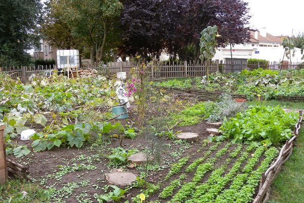 Un jardin solidaire à Versailles