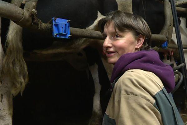 Matin et soir, Nathalie Delahaye trait ses 60 vaches laitières. Son lait bio part dans les Yvelines pour fabriquer des yaourts et de la mozzarella bio.