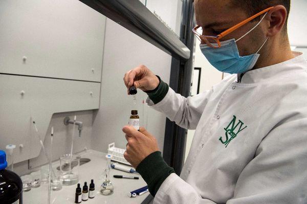 Un laborantin manipulant du cannabis, se présentant ici sous la forme d'huile.